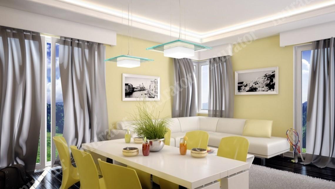 Проект современного дома для большой семьи