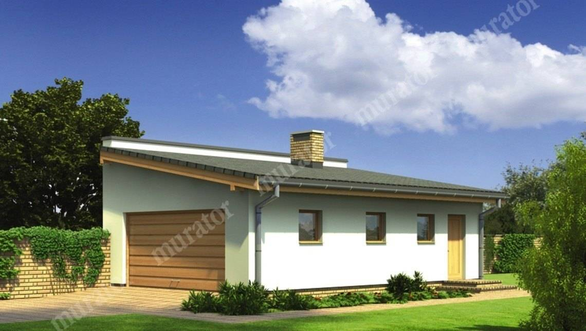 Проект гаража с односкатной крышей на 2 машины