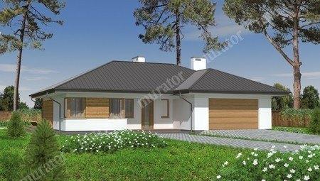Одноэтажный просторный дом