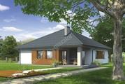 Проект одноэтажного дома с декоративными элементами из дерева