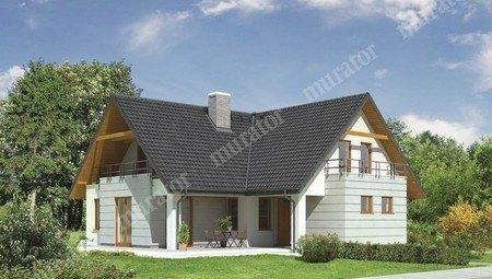 Красивый жилой дом с большой гостиной